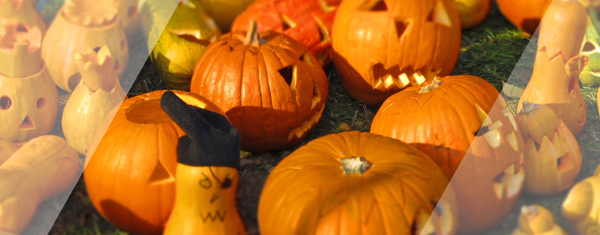 Garry Thind Top 3 Trick-or-Treating Locations in Surrey