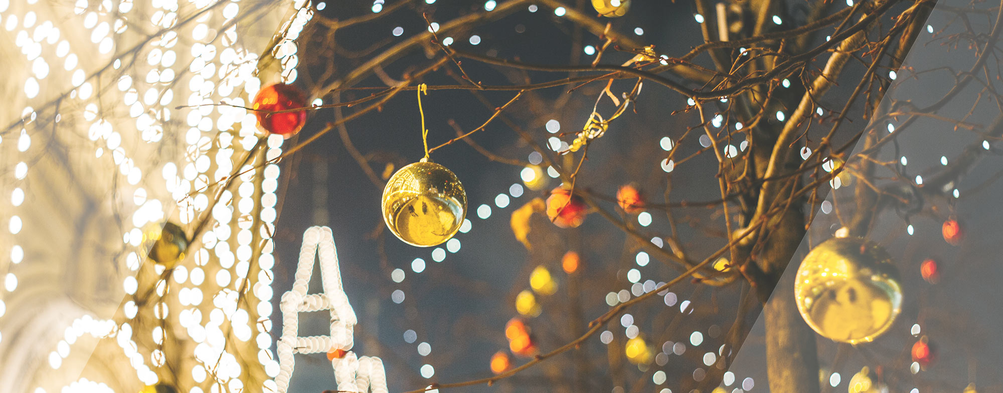 Garry Thind Blog Fun Things to do in Surrey in December